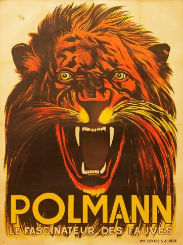 Polmann Lion