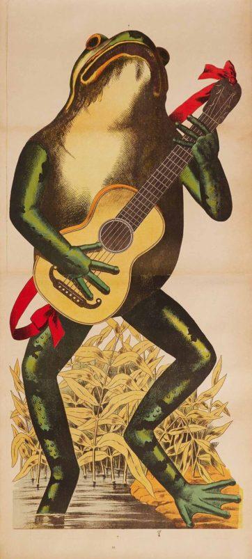 Frog Guitarist