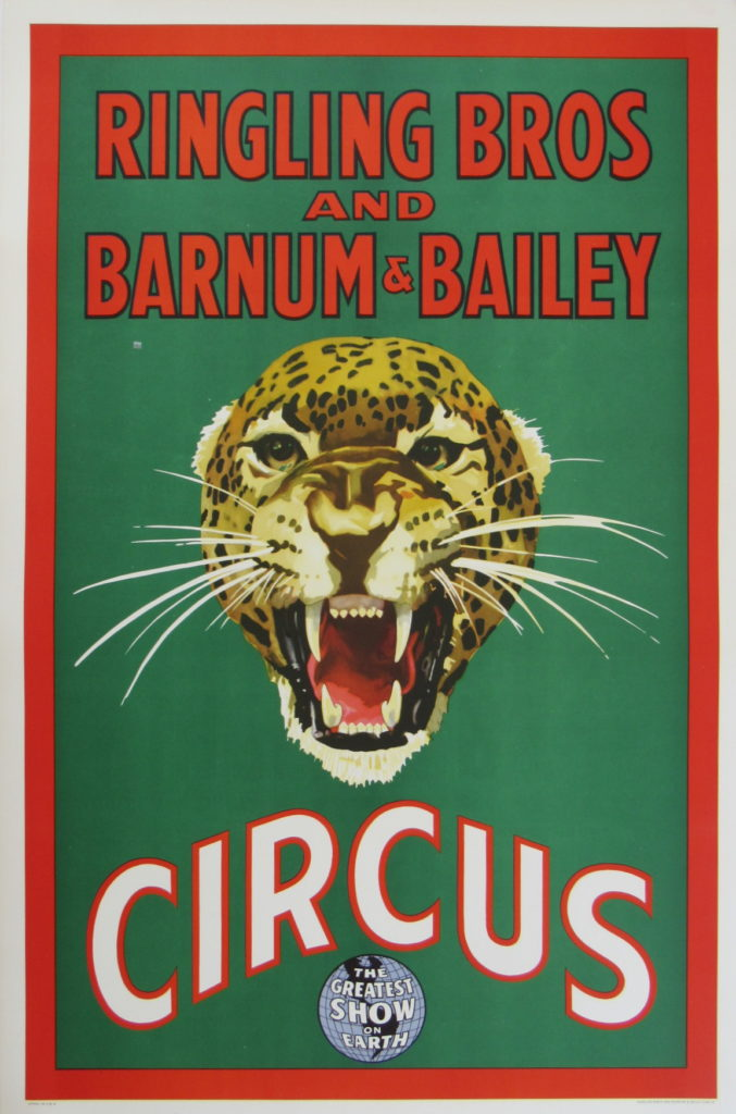 Ringling Bros Barnum Bailey Leopard