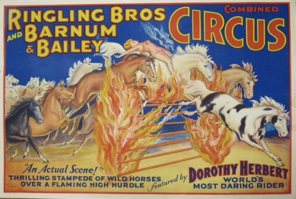 Combined Circus poster